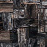PETRIFIED WOOD Black RETRO Natural Stone Countertops, Flooring, and Tiles