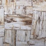PETRIFIED WOOD IVORY RETRO Natural Stone Countertops, Flooring, and Tiles