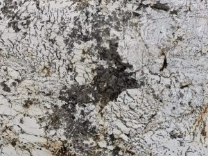 Blanc De Blanc Granite